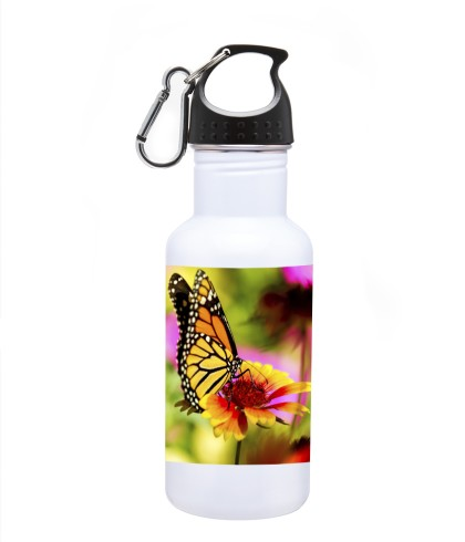 full color butterfly picture on stainless steel water bottle
